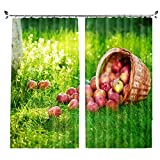 ZZHL Curtains Curtains,Hooks Rings Thermal Insulated Bedroom Blackout for Livingroom Kitchen Bar Cafe 2 Panels Green (Size : 100x241cm)