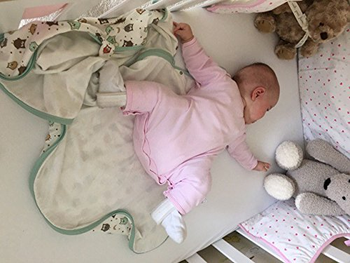 2ede91f15 Amazon.com: Hip Pose Pavlik Harness Sleeping Bag for Babies in Hip  dysplasia Treatment Owls 0-6 Months, Summer Weight 1.0 tog: Baby