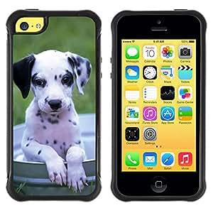 ZETECH CASES / Apple Iphone 5C / DALMATIAN DOG PUPPY BLACK WHITE / Dálmata perro perrito negro blanco / Robusto Caso Carcaso Billetera Shell Armor Funda Case Cover Slim Armor