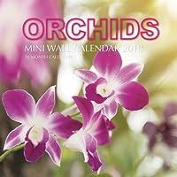 Orchids Mini Wall Calendar 2018: 16 Month Calendar