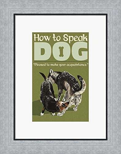 How To Speak Dog   Acquaintance By Lantern Press Framed Art Print Wall  Picture, Flat