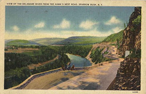 View Of The Delvare River From The Hawk's Nest Road Sparrow Bush, New York Original Vintage Postcard