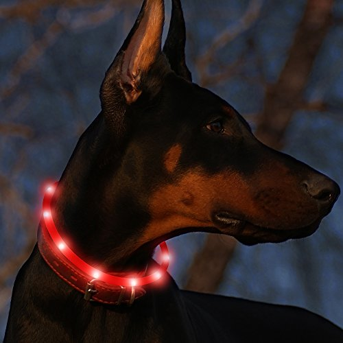 Led Dog Collar USB Rechargeable Glowing Pet Safety Collars Water...