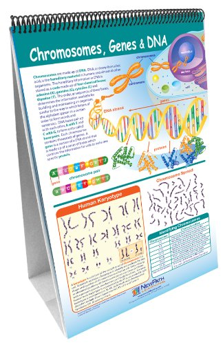 NewPath Learning 10 Piece Science Genetics and Heredity Curriculum Mastery Flip Chart Set, Grade 6-10