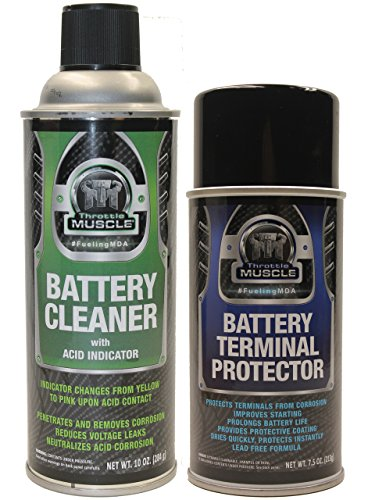 throttle-muscle-tm2548-battery-cleaner-with-acid-indicator-and-terminal-protector-package