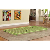 Furniture of America Newton Metal Twin Trundle, Apple Green