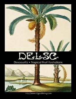 Descourtilz - Tropical Fruit Illustrations by [Widmann, Melanie Paquette]