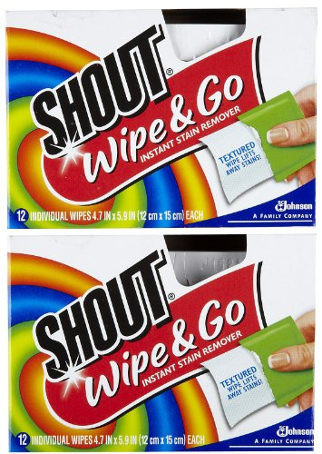 Stain Removal Wipes - Shout Stain Remover Wipes - 12 ct - 2 pk