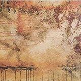 Alogon [Vinyl]