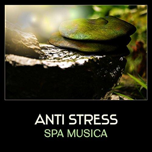 Anti stress spa musica