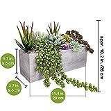 Supla Artificial Pre-Made Succulent Wood Planter