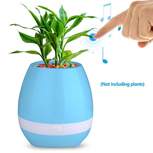 Love Pot (FINGER LOVE flower pot (Flower pot Blue))