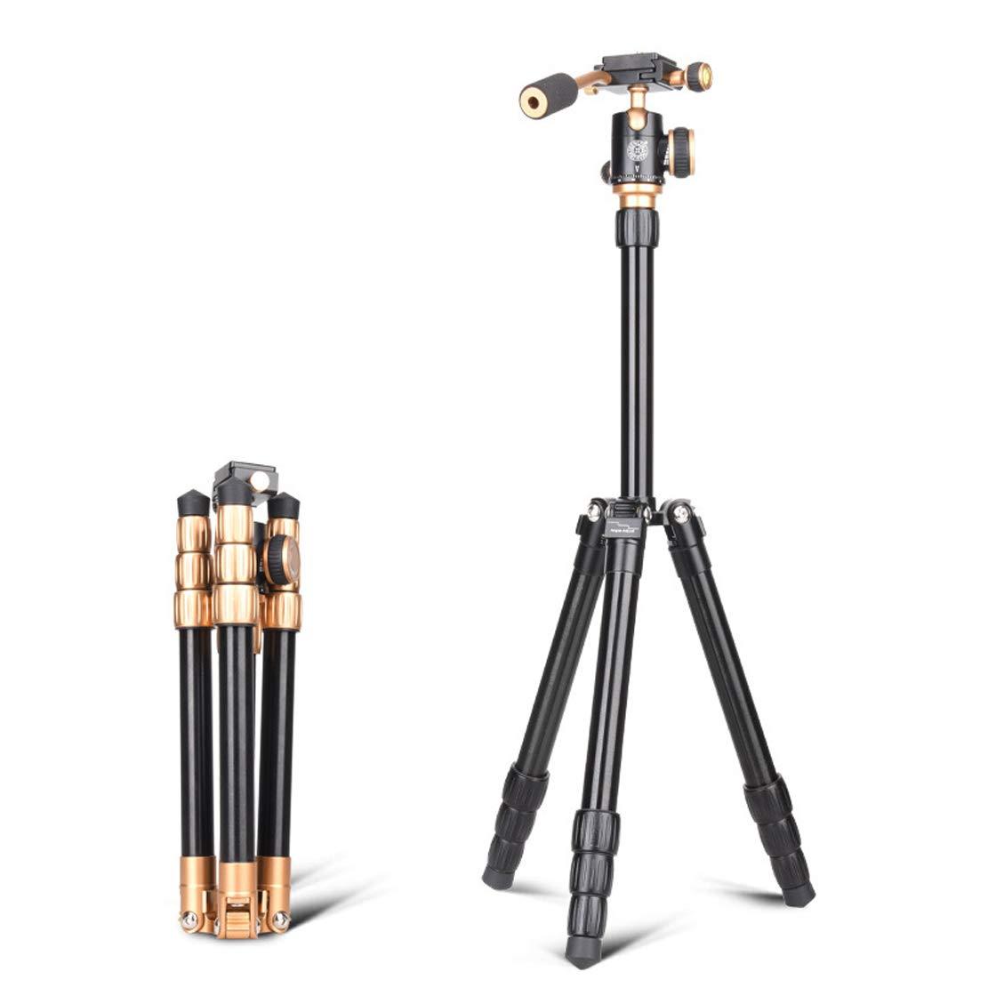 【新作からSALEアイテム等お得な商品満載】 旅行 三脚 カメラ ブラケット ブラケット B07QXYXQ1C 重量0.94kg 40-118cm Dslr一眼レフソニーキヤノンニコンとその他のカメラ機器に対応(35kgゴールド 旅行 - ブラック) B07QXYXQ1C, トヨサカシ:f943159d --- martinemoeykens.com