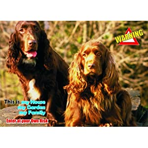 Attention - Beware / Fun Sign Dog Field Spaniel Dog for your home or house SF1417 2