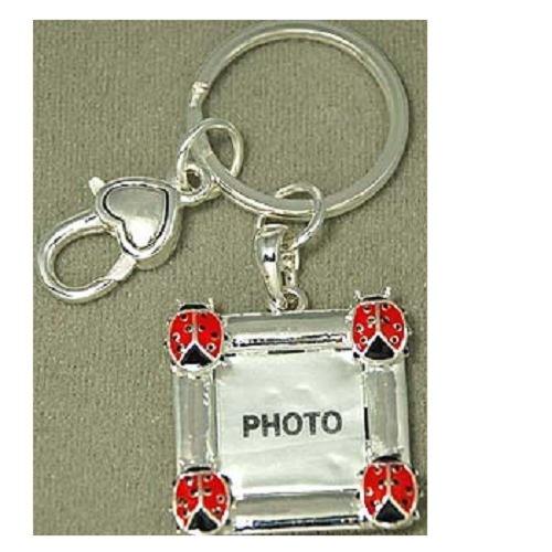 Keyring ~ Ladybug Theme ~ Photo Frame -