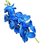 jiumengya-5pcs-Blue-Color-Phalaenopsis-Butterfly-Moth-Orchid-8-Flower-HeadsPiece-Orchids-for-Wedding-Decorative-Artificial-Flowers-Blue