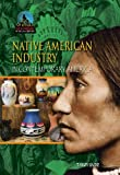 Native American Industry in Contemporary America, Tammy Gagne, 1612284434