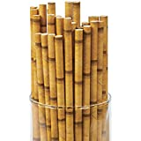 Bamboo Paper Straws (24 Pack) 7 3/4""