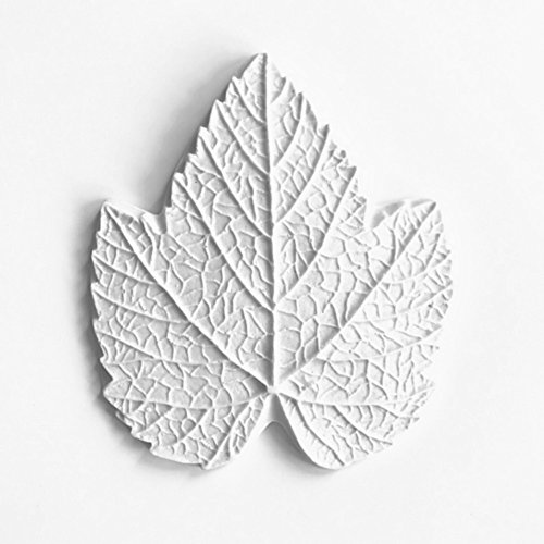 Grape leaf Resin mold universal venation for leaves and petals