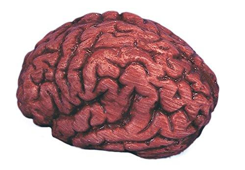 Loftus International Bloody Organ Brain Halloween 6