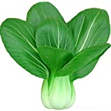 buy Bok Choy Pak Choi ShangHaiQing White Cabbage 1000 Seeds Easy and Fast Growing now, new 2019-2018 bestseller, review and Photo, best price $1.98