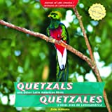 Quetzals and Other Latin American Birds / Quetzales y otras aves de Latinoamerica (Animals of Latin America / Animales De Latinoamerica) (Spanish and English Edition)