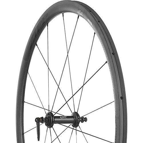 (Zipp 202 Carbon Road Wheel - Tubular Black, Rear, SRAM/Shimano)