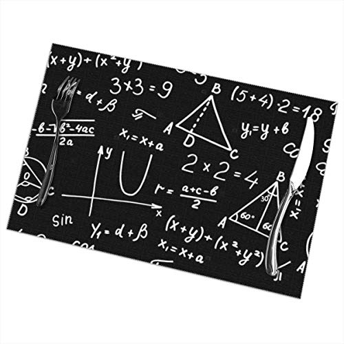 Peijiu-yi Algebra Geometry Abstract Math Placemats Set of 6,Heat-Resistant Placemats Stain Resistant Anti-Skid Washable Mats Placemats
