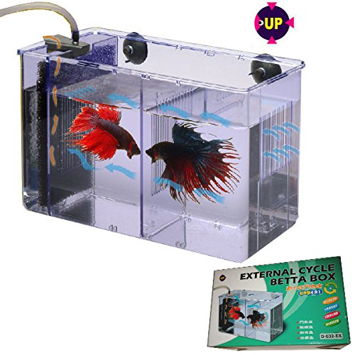 UP Aqua D-632-EX External Betta Box (Quarantine Tanks)