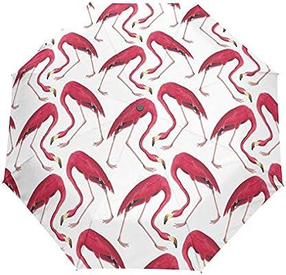 FANTAZIO Paraguas de Viaje Tres Pliegues, diseño de flamencos ...