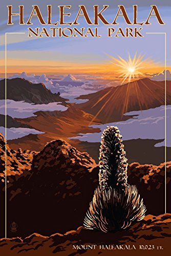 Haleakala National Park - Sunrise (9x12 Art Print, Wall Decor Travel Poster) from Lantern Press
