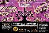 2 Towns Ciderhouse, Seasonal Single, 16.9 Fl Oz