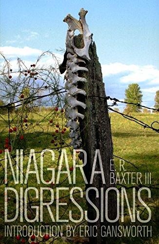 Niagara Digressions
