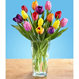 Multi-Colored Tulips (with FREE glass vase) - Flowers