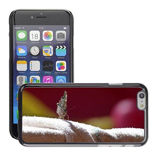 """Bild Hart Handy Schwarz Schutz Case Cover Schale Etui // M00133768 Schmetterling Insekt sitzt Antenna // Apple iPhone 6 PLUS 5.5"""""""