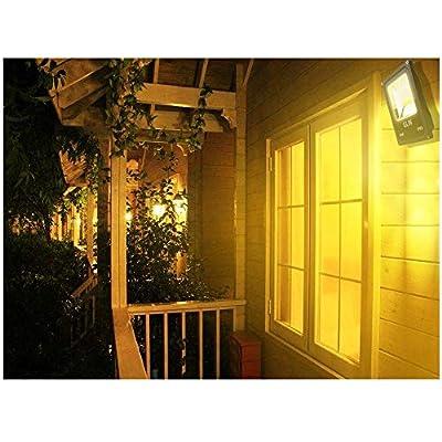 GLW LED Landscape Lights 12V~60V Flood Lights 20W Pathway Light Spotlights Warm White IP65 Waterproof for Driveway, Yard, Outdoor Garden Lights with Spike Stand