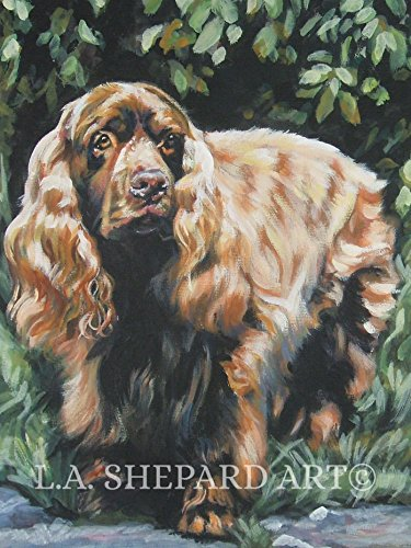 A Sussex Spaniel dog art portrait print of an LA Shepard painting 12x16