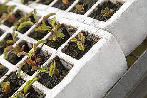 8 Bandejas de germinación de pórex, semilleros de Corcho Blanco ...