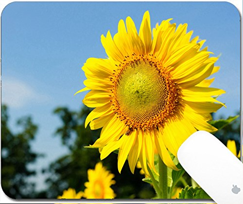 Luxlady Gaming Mousepad 9.25in X 7.25in IMAGE: 34002034 Close up of sunflowers against a blue sky on field -