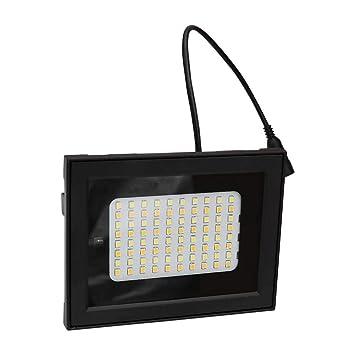 Matefielduk 160 LED 2 Cabeza RC Sensor de luz solar Sensor de luz de inundación Lámpara de punto de parque - - Amazon.com