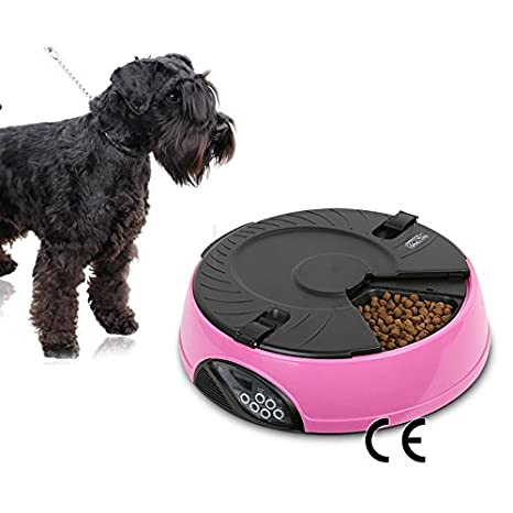 ParaCity Feeder programable temporizador automático de 6 comidas ABS mascota perro gato Digital cuencos: Amazon.es: Productos para mascotas