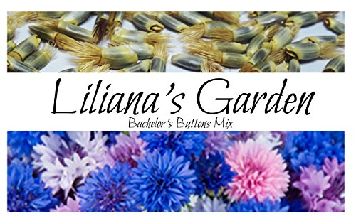 Flower Seeds - Bachelor's Buttons- aka Cornflower - Edible - Mixed Colors - Liliana's (Button Seed)