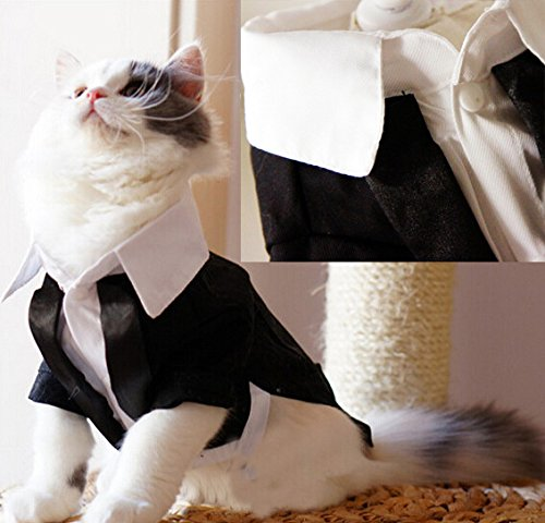I Pet 174 Handsome Prince Cat Bridegroom Wedding Tuxedo Faux Twinset Design Small Boy Dog Formal