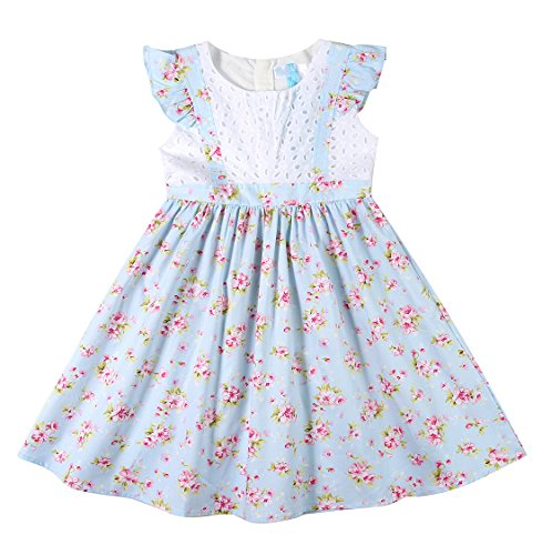 Sharequeen Girl's Toddler Dress Apron Style Floral Lace Ruffle Sleeves Cotton Girls Dresses SQ041 (2-3 Years, Blue)