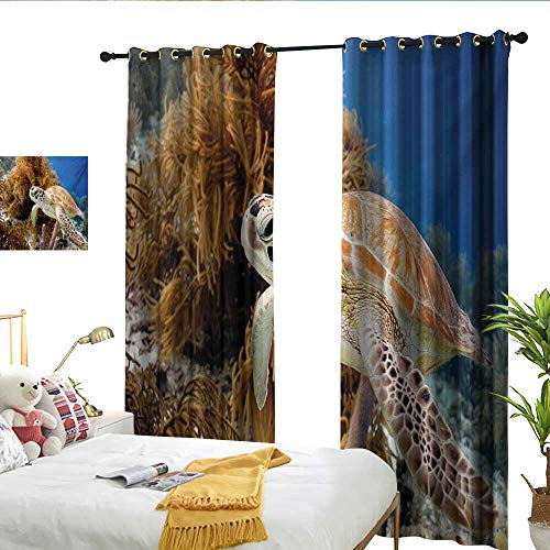 WinfreyDecor Turtle Insulated Sunshade Curtain Coral Reef and Sea Turtle Close Up Photo Bonaire Island Waters Maritime Noise Reducing W84 x -
