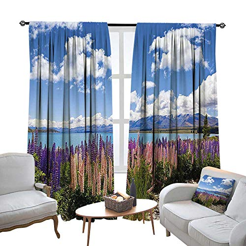 NineHuihome Rod Pocket Window Curtain Drape Decor Curtains for Living Room/Bedroom Lup Wildflowers The Shore Cloudy Sky Digital Sky Blue 96.5