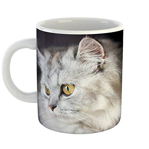 Westlake Art - Coffee Cup Mug - Persian Cat - Modern Picture Photography Artwork Home Office Birthday Gift - 11oz (69m 776) (Cats Pictures Persian)