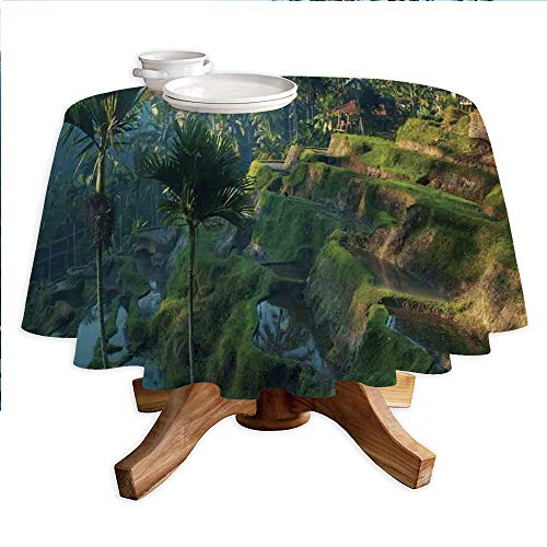 (Balinese Decor Round Polyester Tablecloth,Terrace Rice Fields Palm Trees Traditional Farmhouse Morning Sunrise View Bali Indonesia,Dining Room Kitchen Round Table Cover,55