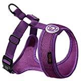 Gooby 04108 Small Choke-Free Freedom II Harness for Small Dogs, Purple