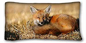 Soft Pillow Case Cover Animal Custom Cotton & Polyester Soft Rectangle Pillow Case Cover 20x36 inches (One Side) suitable for Queen-bed
